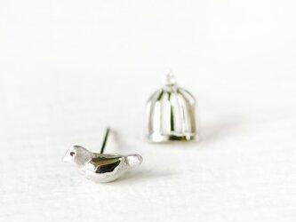 鳥かご 小鳥 ピアス シルバー925の画像
