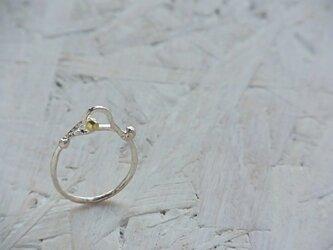ひな ringの画像