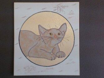 白猫図の画像