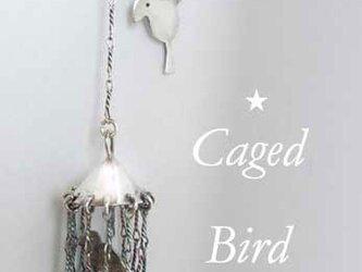 「籠の鳥」はいつか飛び立つ?ピアスの画像