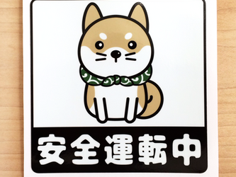 柴犬ステッカー 安全運転ステッカーの画像