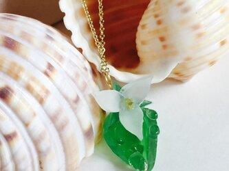 【noilmok】白露草のネックレスの画像