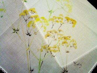 綿ハンカチ(オミナエシ)の画像