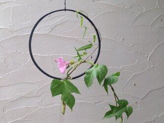 円縁の花器の画像