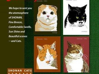 ポストカード 湘南Cats 4枚セットの画像
