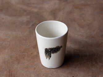 粉引フリーカップ(コブシメ)の画像