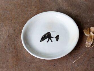 粉引丸皿(マレーバク歩き)【クリックポスト198円可】の画像
