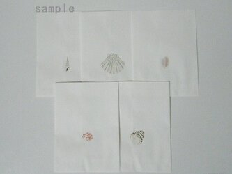 紙バッグセット〈SHELLS-1〉の画像