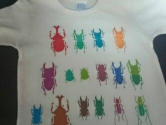 昆虫標本箱・Kids Tシャツの画像