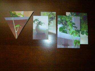 封筒6点~つる~の画像
