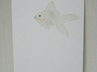 葉書〈金魚(一匹)-3〉の画像
