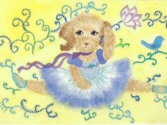 バレエ犬ちゃんの画像