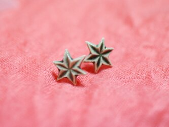 六角星 ピアス/緑の画像