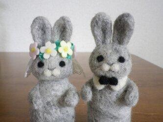 【受注制作】うさぎさん (happy wedding)の画像