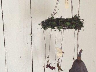 木の実 ユラユラモービルの画像