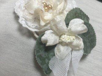 白い花♪の画像
