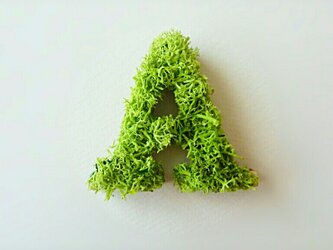 アルファベット オブジェ(モス) 木製『A』×1点の画像