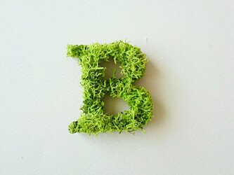 アルファベット オブジェ(モス) 木製『B』×1点の画像