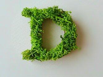 アルファベット オブジェ(モス) 木製『D』×1点の画像