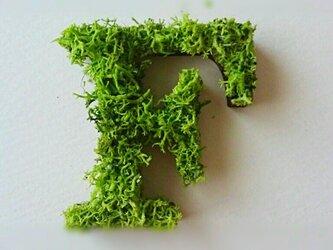 アルファベット オブジェ(モス) 木製『F』×1点の画像