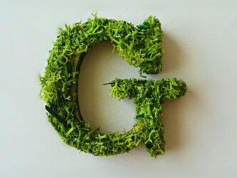 アルファベット オブジェ(モス) 木製『G』×1点の画像