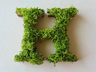 アルファベット オブジェ(モス) 木製『H』×1点の画像