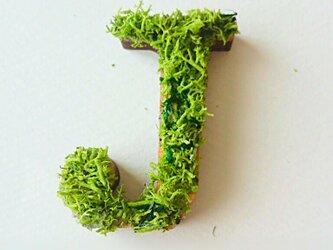 アルファベット オブジェ(モス) 木製『J』×1点の画像