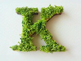 アルファベット オブジェ(モス) 木製『K』×1点の画像