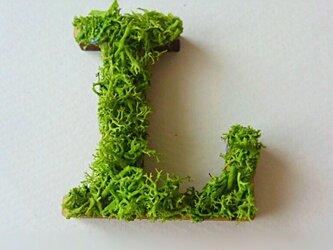 アルファベット オブジェ(モス) 木製『L』×1点の画像