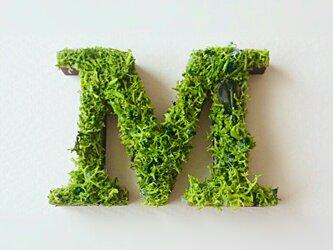アルファベット オブジェ(モス) 木製『M』×1点の画像