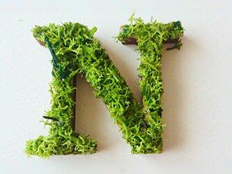 アルファベット オブジェ(モス) 木製『N』×1点の画像