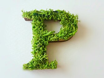アルファベット オブジェ(モス) 木製『P』×1点の画像