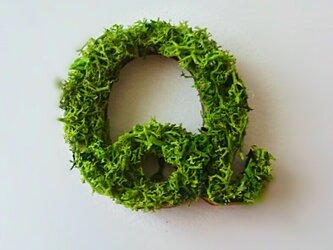 アルファベット オブジェ(モス) 木製『Q』×1点の画像