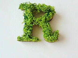 アルファベット オブジェ(モス) 木製『R』×1点の画像