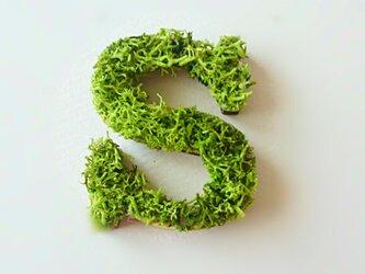 アルファベット オブジェ(モス) 木製『S』×1点の画像