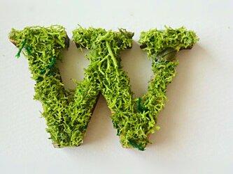 アルファベット オブジェ(モス) 木製『W』×1点の画像