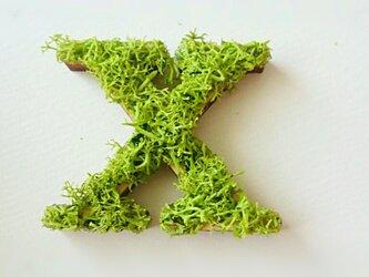 アルファベット オブジェ(モス) 木製『X』×1点の画像