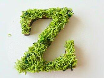アルファベット オブジェ(モス) 木製『Z』×1点の画像