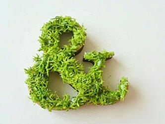 アルファベット オブジェ(モス) 木製『&』×1点の画像