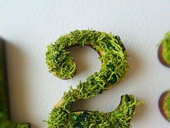 数字 オブジェ(モス) 木製『2』×1点の画像