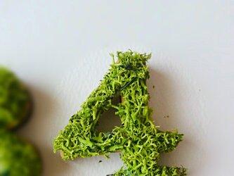数字 オブジェ(モス) 木製『4』×1点の画像