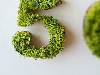 数字 オブジェ(モス) 木製『5』×1点の画像