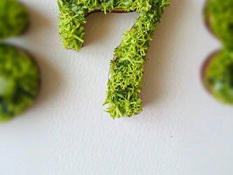 数字 オブジェ(モス) 木製『7』×1点の画像