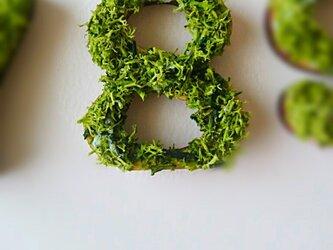 数字 オブジェ(モス) 木製『8』×1点の画像