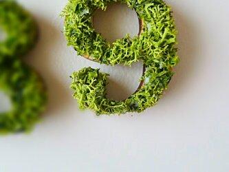数字 オブジェ(モス) 木製『9』×1点の画像