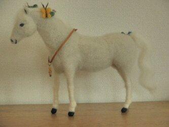 フェルトの馬 芦毛 幸せを運ぶ馬の画像