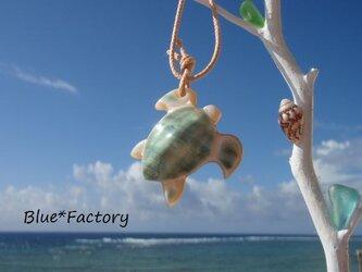 夜光貝ペンダント056 ホヌ(ウミガメ)小の画像