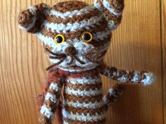 シマシマ猫さんの画像