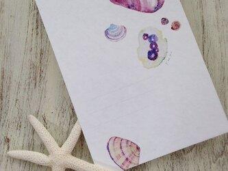 海がくれたもの 〜紫色の貝の画像