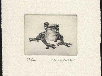 かえる・J / 銅版画 (額なし)の画像